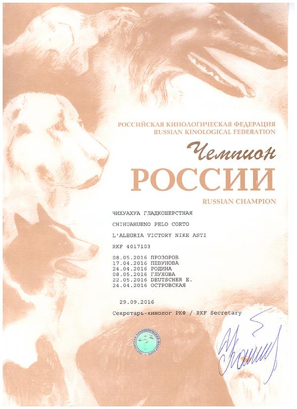 Диплом Найка -Чемпион России