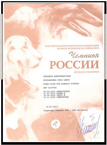 Диплом Чемпиона России